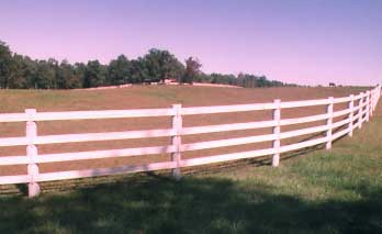 George White Fencing landscape
